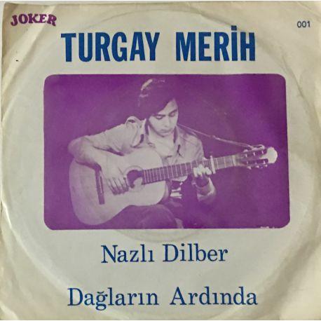 Turgay Merih – Nazlı Dilber - Dağların Ardında